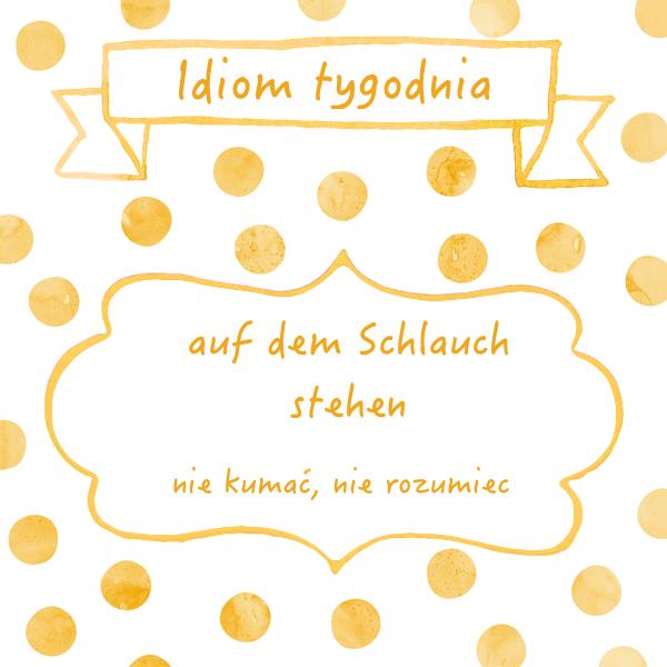 6. schlauch